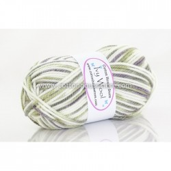 Ivy Wool White Moss Grey 923b 50g (Last unit)