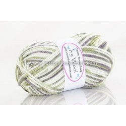 Ivy Wool White/Moss/Grey VW-923a 100g